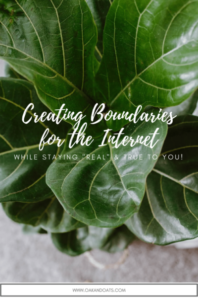Creating Boundaries for the Internet while staying Real