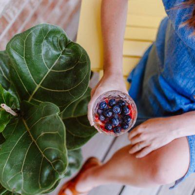 DIY Frozen Fruit Ice Cubes