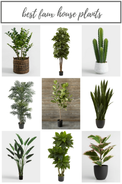 The Best Faux House Plants