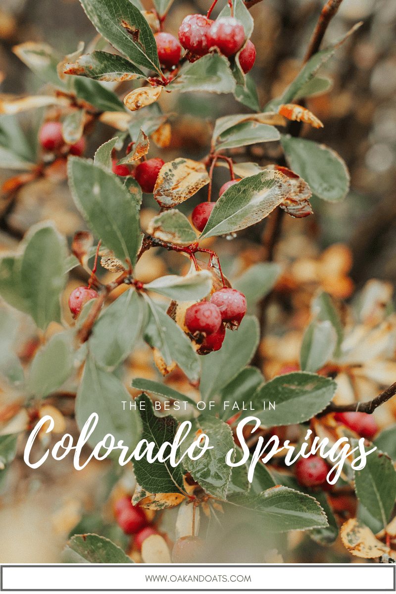 What to do near Colorado Springs in the Fall