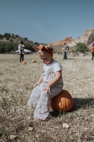 Picking out the Pumpkin